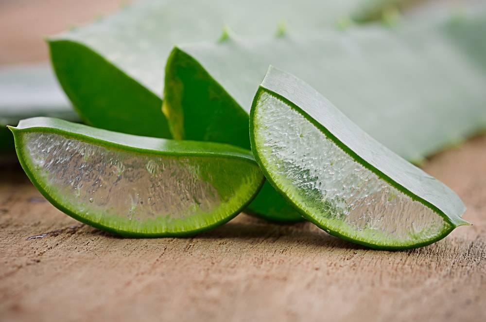 L'aloe vera, un véritable allié. / Go for an Aloe Vera juice.